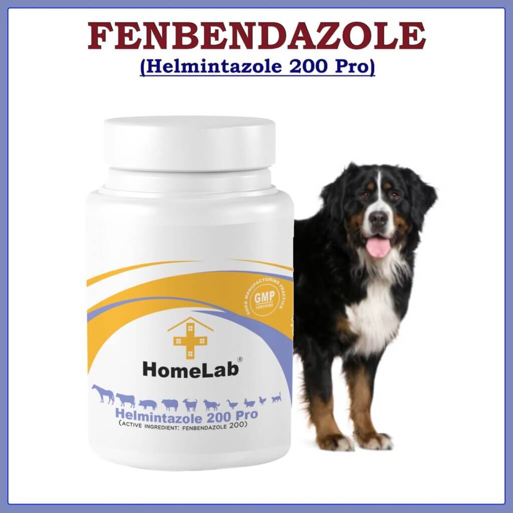 Helmintazole 500mg capsules Fenbendazol panacur for dog